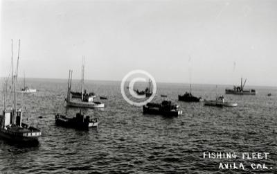 Avila port san luis products for Avila beach fishing